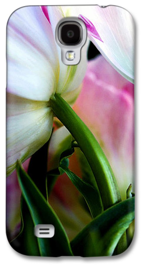 Flower Galaxy S4 Case featuring the photograph Layers Of Tulips by Marilyn Hunt