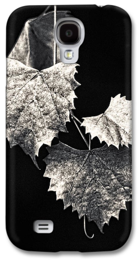 B&w Galaxy S4 Case featuring the photograph Leaves by Christopher Holmes