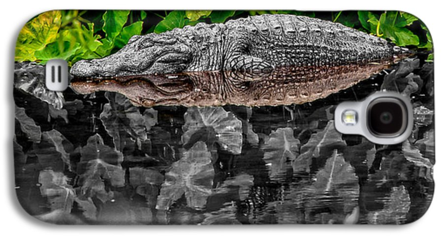 American Galaxy S4 Case featuring the photograph Let Sleeping Gators Lie - Mod by Christopher Holmes