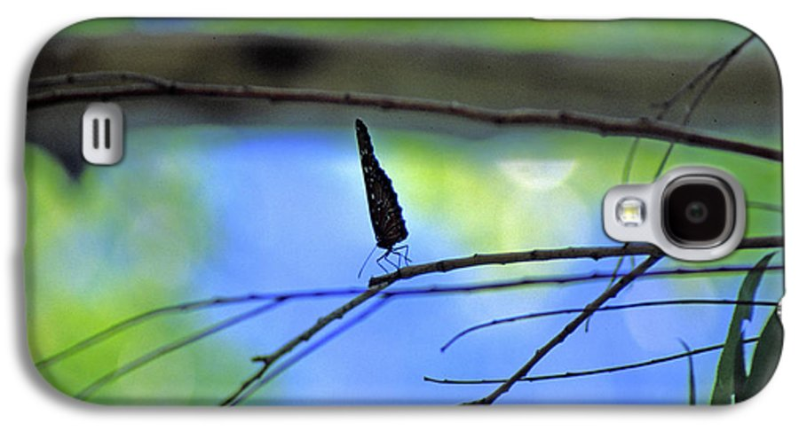 Butterfly Galaxy S4 Case featuring the photograph Life On The Edge by Randy Oberg