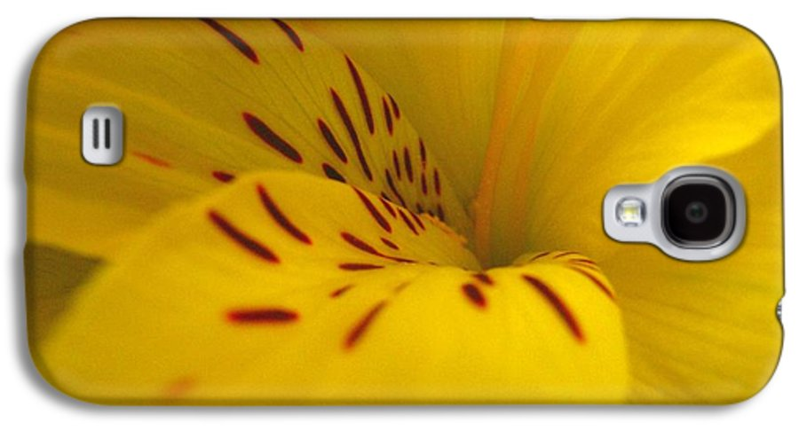 Yellow Galaxy S4 Case featuring the photograph Lily by Rhonda Barrett