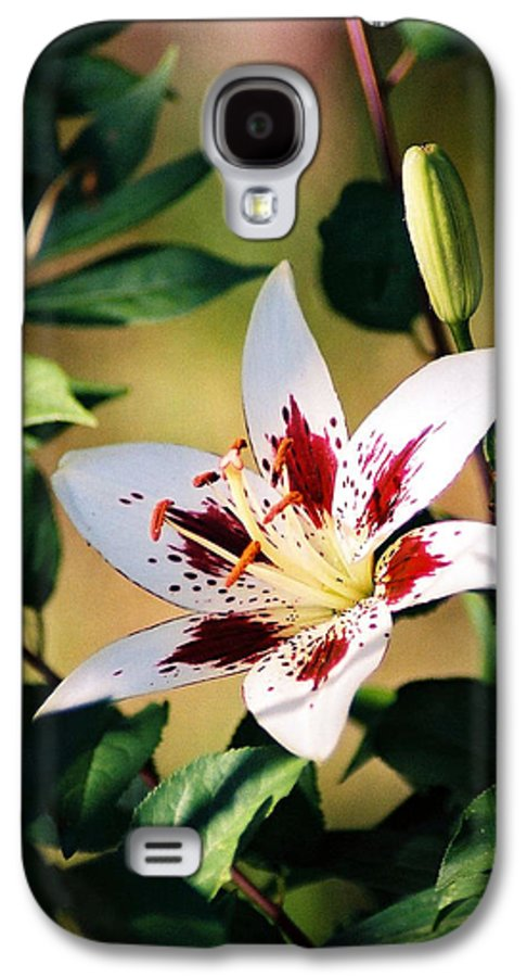 Flower Galaxy S4 Case featuring the photograph Lily by Steve Karol