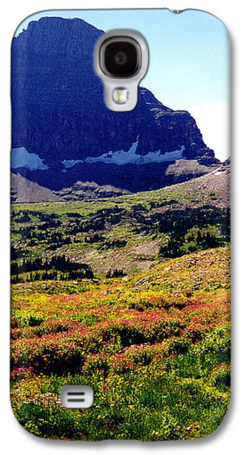 Glacier National Park Galaxy S4 Case featuring the photograph Logans Pass In Glacier National Park by Nancy Mueller