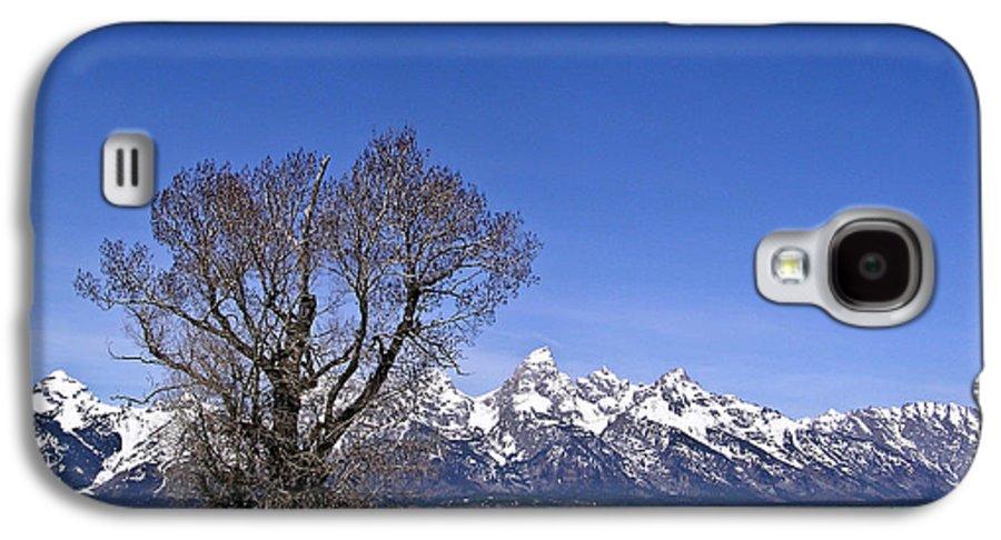 Tree Galaxy S4 Case featuring the photograph Lone Tree At Tetons by Douglas Barnett
