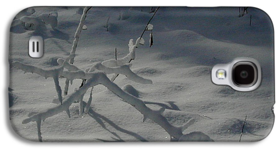 Loneliness Galaxy S4 Case featuring the photograph Loneliness In The Cold by Douglas Barnett