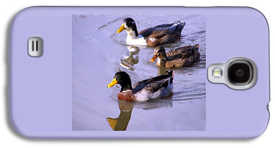 Duck Galaxy S4 Case featuring the photograph Mallards by Kenna Westerman