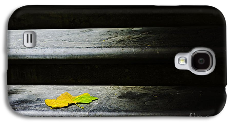Maple Leaf Galaxy S4 Case featuring the photograph Maple Leaf On Step by Sheila Smart Fine Art Photography