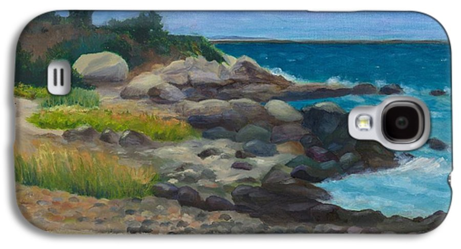 Landscape Galaxy S4 Case featuring the painting Meigs Point by Paula Emery