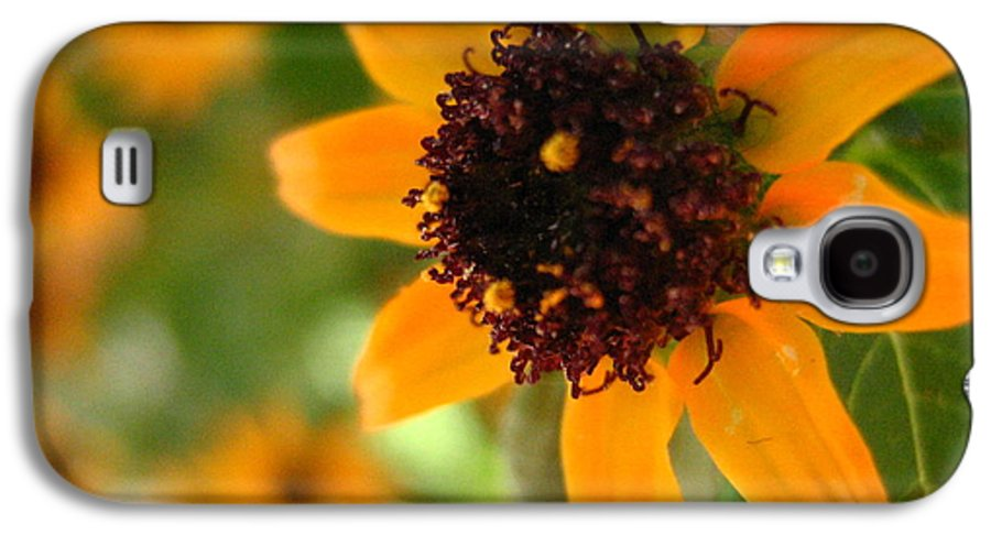 Flower Galaxy S4 Case featuring the photograph Mini Sunflower by Melissa Parks