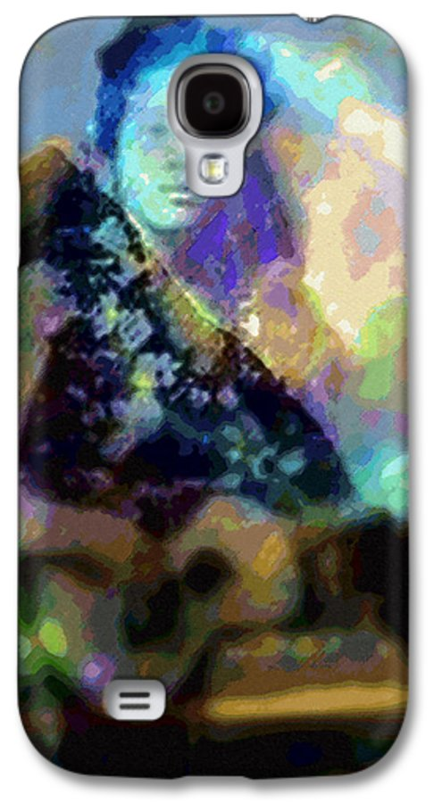 Tropical Interior Design Galaxy S4 Case featuring the photograph Moe Uhane Haili Moe by Kenneth Grzesik