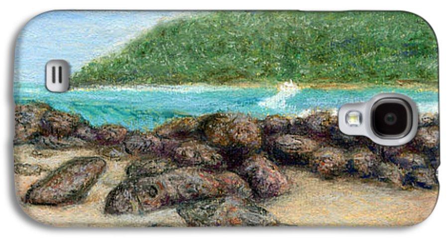 Coastal Decor Galaxy S4 Case featuring the painting Moloa'a Rocks by Kenneth Grzesik