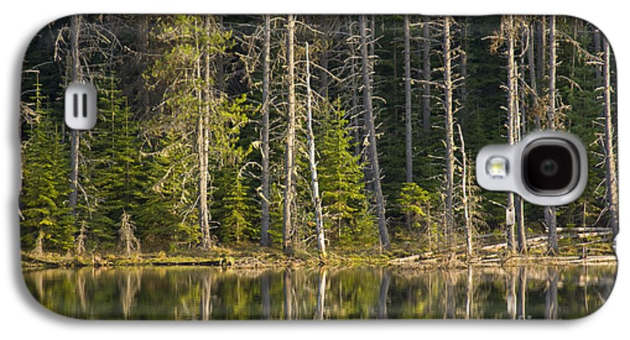 Trees Galaxy S4 Case featuring the photograph Moose Creek Reservoir by Idaho Scenic Images Linda Lantzy