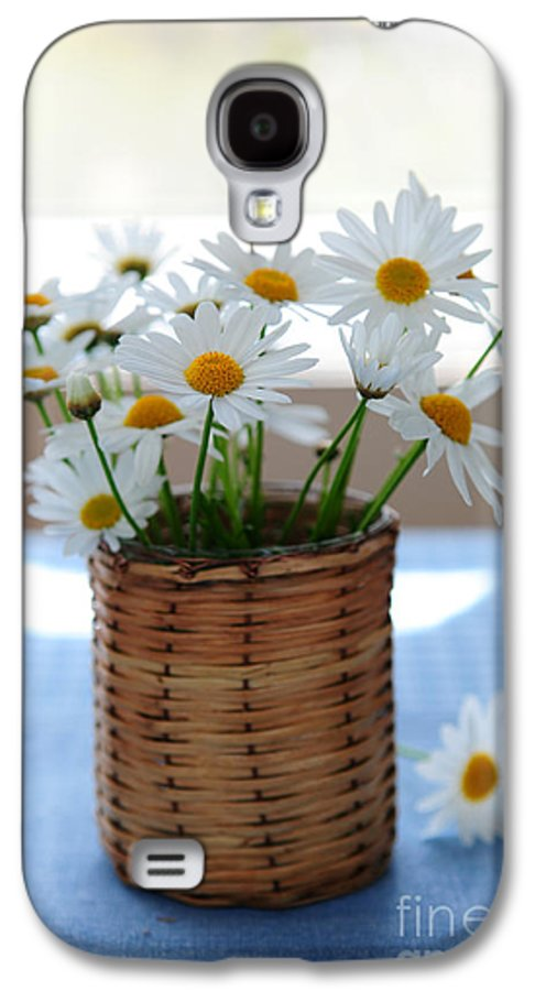 Daisy Galaxy S4 Case featuring the photograph Morning Daisies by Elena Elisseeva