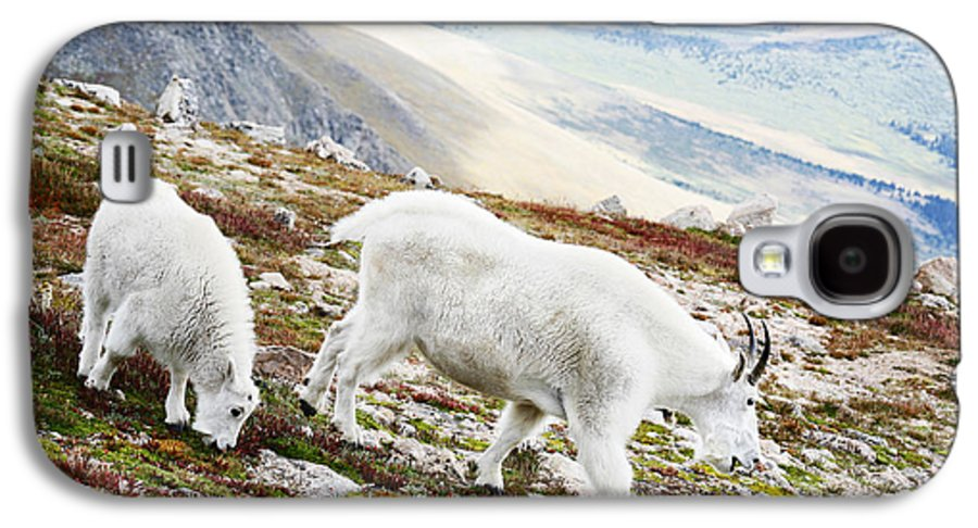 Mountain Galaxy S4 Case featuring the photograph Mountain Goats 1 by Marilyn Hunt