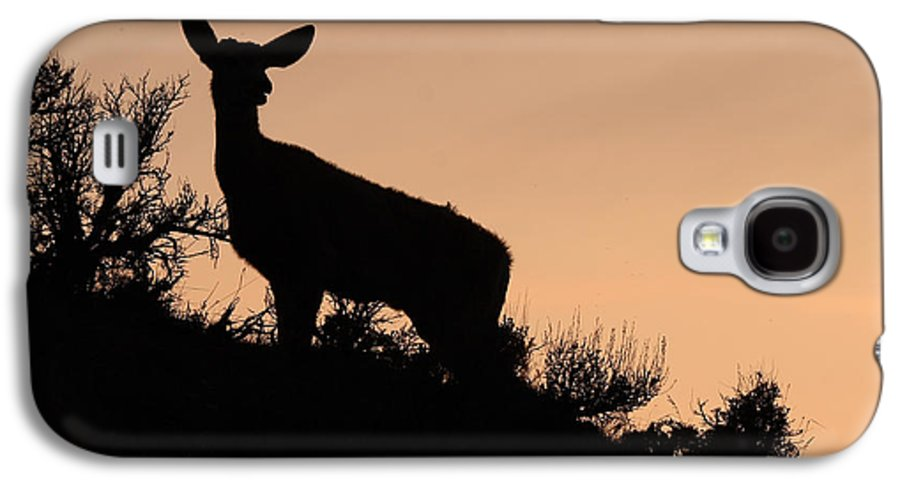 Deer Galaxy S4 Case featuring the photograph Mule Deer Silhouetted Against Sunset Ridge by Max Allen