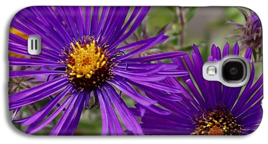 Plant Galaxy S4 Case featuring the painting My Purple Ways by Debbie May