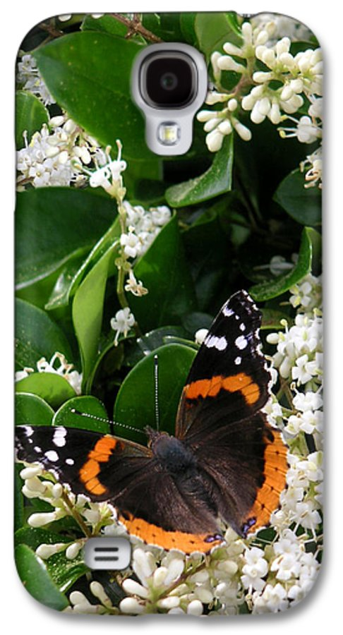 Nature Galaxy S4 Case featuring the photograph Nature In The Wild - A Sweet Stop by Lucyna A M Green