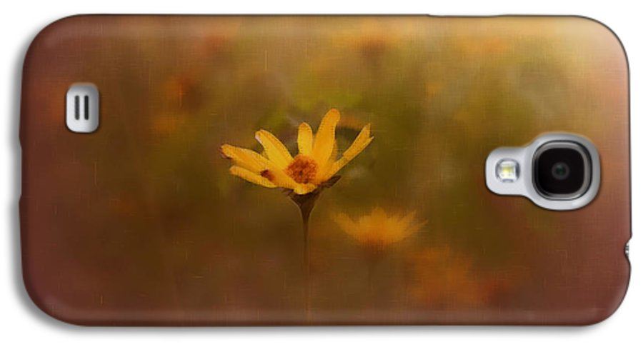 Nature Galaxy S4 Case featuring the photograph Nature by Linda Sannuti