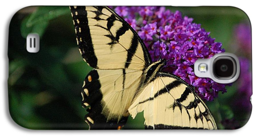 Butterfly Galaxy S4 Case featuring the photograph Nothing Is Perfect by Debbi Granruth
