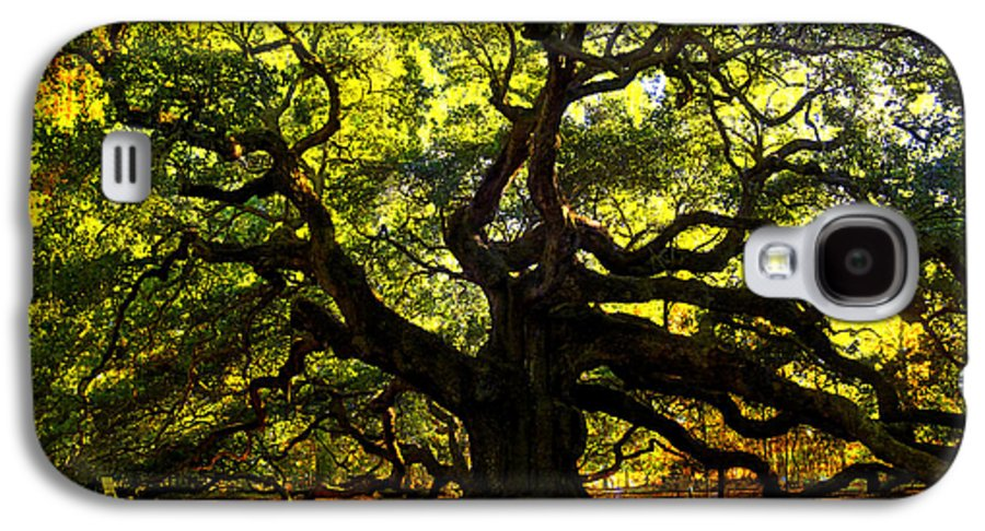 Angel Oak Galaxy S4 Case featuring the photograph Old Old Angel Oak In Charleston by Susanne Van Hulst