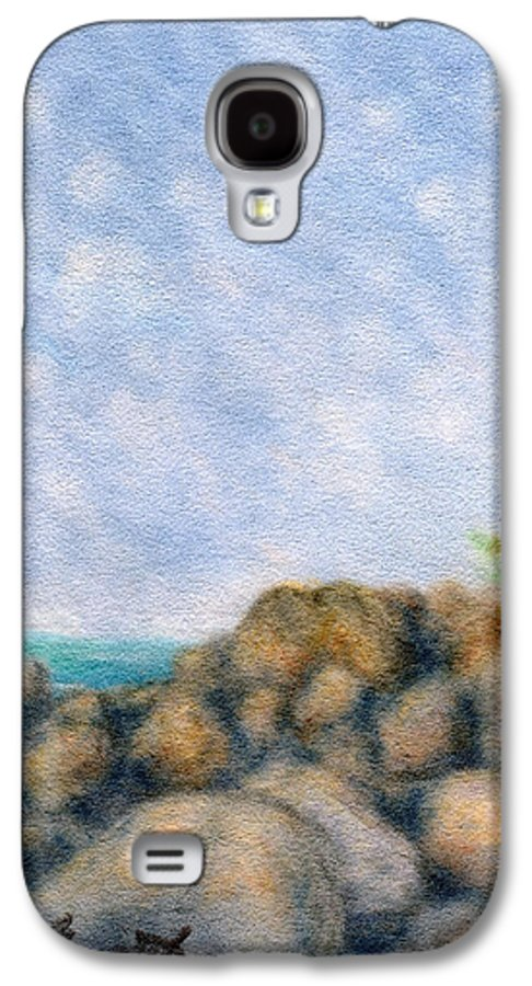 Rainbow Colors Pastel Galaxy S4 Case featuring the painting On The Rocks by Kenneth Grzesik