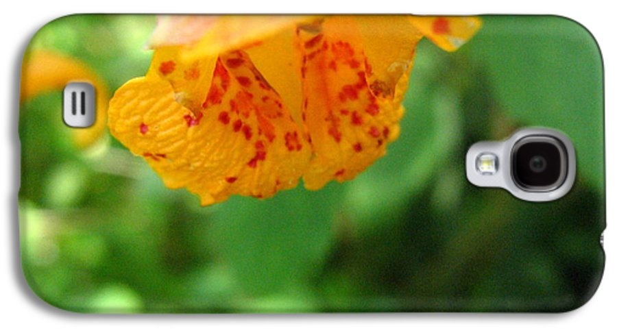Flower Galaxy S4 Case featuring the photograph Orange Flower by Melissa Parks