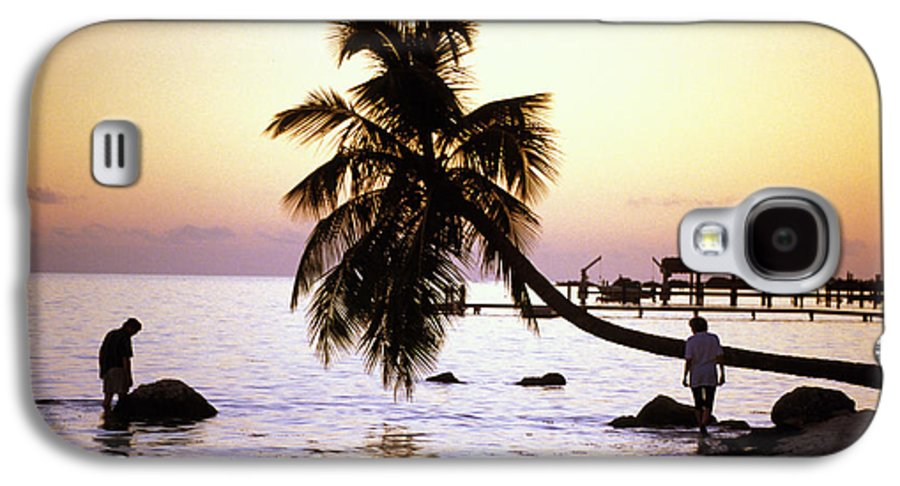 Sunset Galaxy S4 Case featuring the photograph Palm At The Moorings by Carl Purcell
