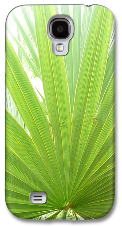 Green Galaxy S4 Case featuring the photograph Palmetto by Kathy Schumann