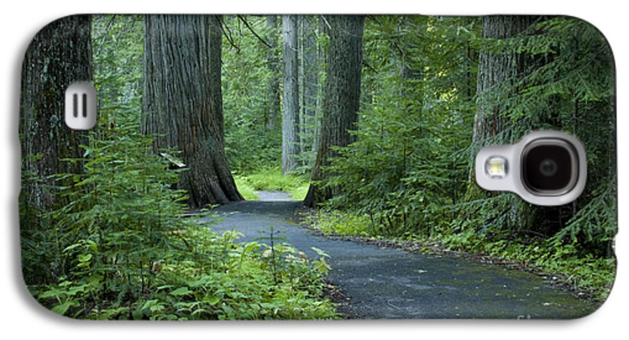 Grove Galaxy S4 Case featuring the photograph Path Through The Cedars by Idaho Scenic Images Linda Lantzy