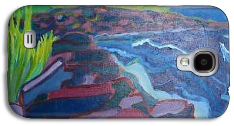 Ocean Galaxy S4 Case featuring the painting Pemaquid Cliffs by Debra Bretton Robinson