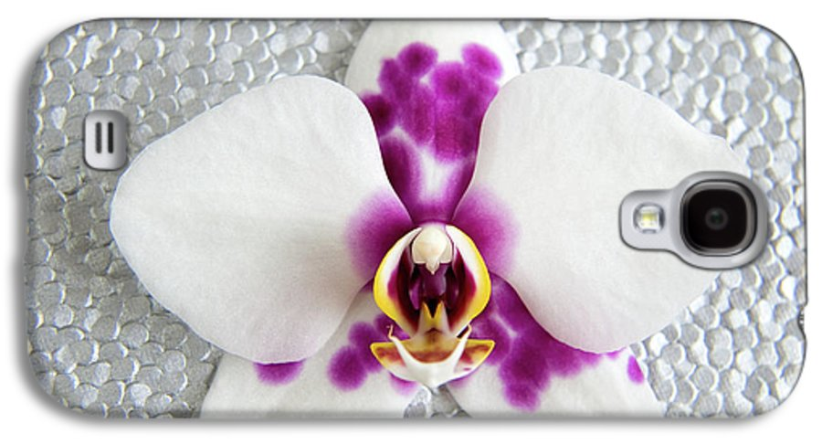 Nature Galaxy S4 Case featuring the photograph Phalaenopsis Yu Pin Panda by Julia Hiebaum