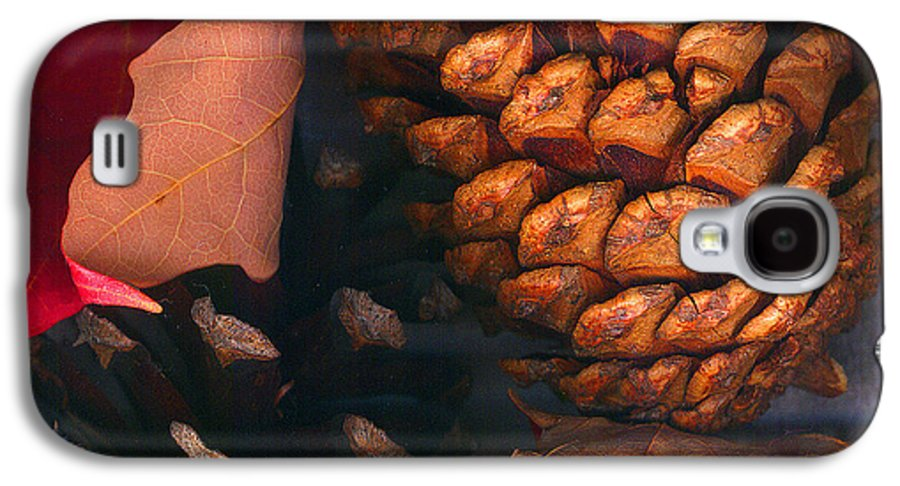 Pine Cones Galaxy S4 Case featuring the photograph Pine Cones And Leaves by Nancy Mueller