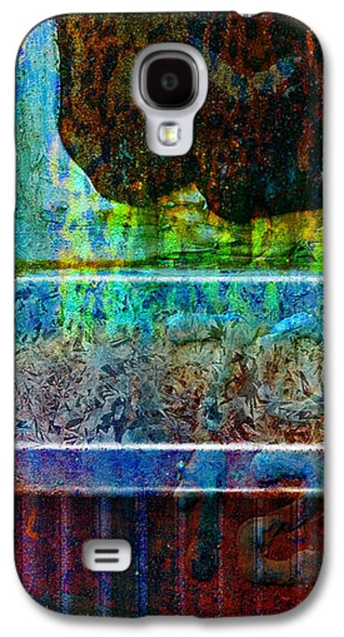 Pi Galaxy S4 Case featuring the photograph piNsky by Skip Hunt
