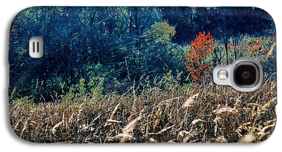Landscape Galaxy S4 Case featuring the photograph Prairie Edge by Steve Karol