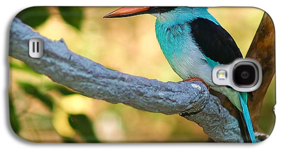 Kingfisher Galaxy S4 Case featuring the photograph Pretty Bird by Gaby Swanson