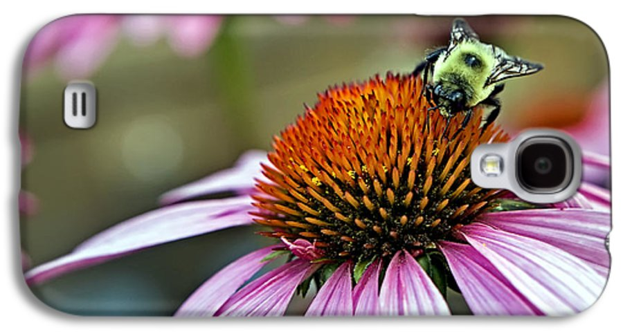 Macro Galaxy S4 Case featuring the photograph Purple Cone Flower And Bee by Al Mueller