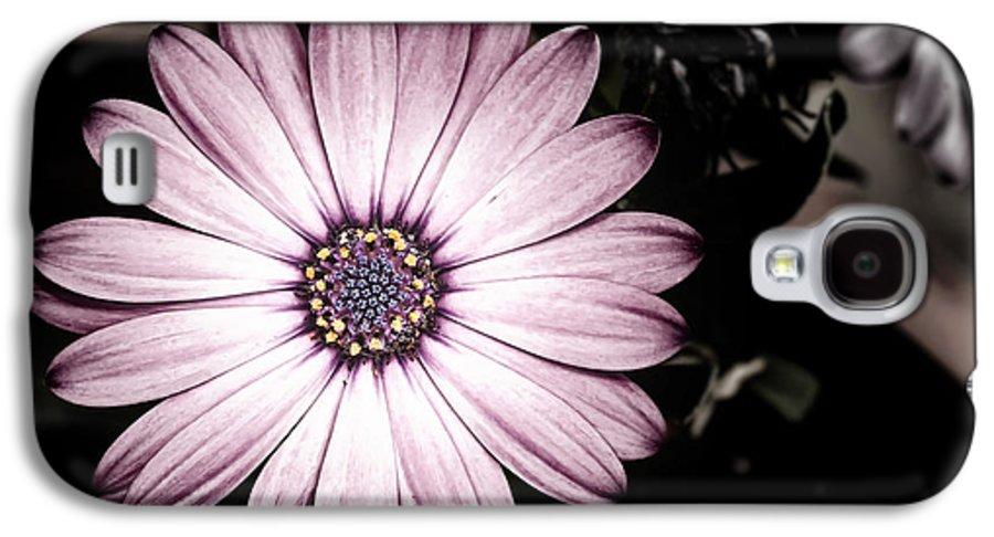 Flower Galaxy S4 Case featuring the photograph Purple Flower by Al Mueller
