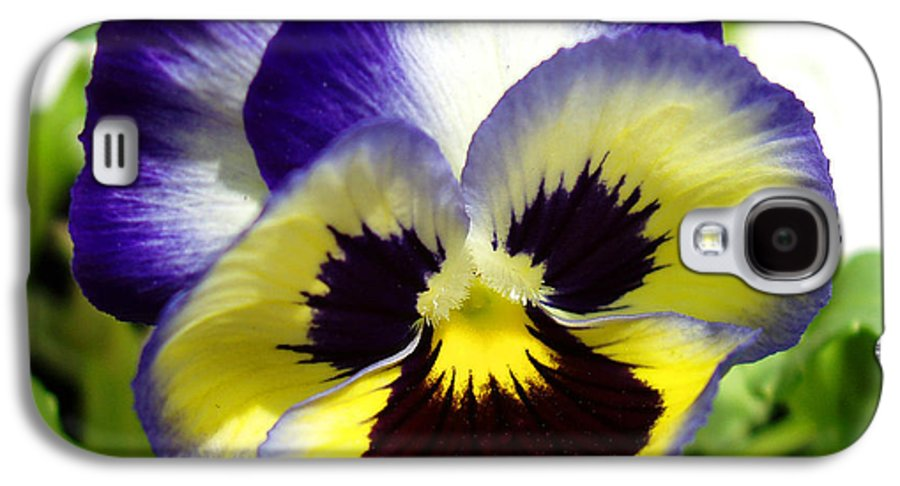 Pansy Galaxy S4 Case featuring the photograph Purple White And Yellow Pansy by Nancy Mueller