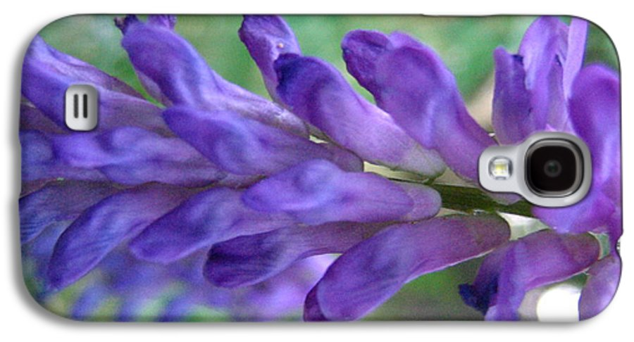 Flower Galaxy S4 Case featuring the photograph Purple Wildflower by Melissa Parks