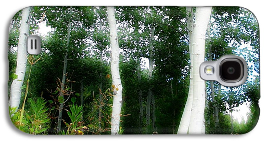 Aspens Galaxy S4 Case featuring the photograph Quaking by Idaho Scenic Images Linda Lantzy