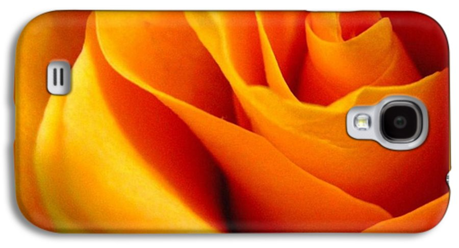 Rose Galaxy S4 Case featuring the photograph Queen Rose by Rhonda Barrett