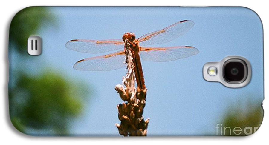 Dragonfly Galaxy S4 Case featuring the photograph Red Dragonfly by Dean Triolo
