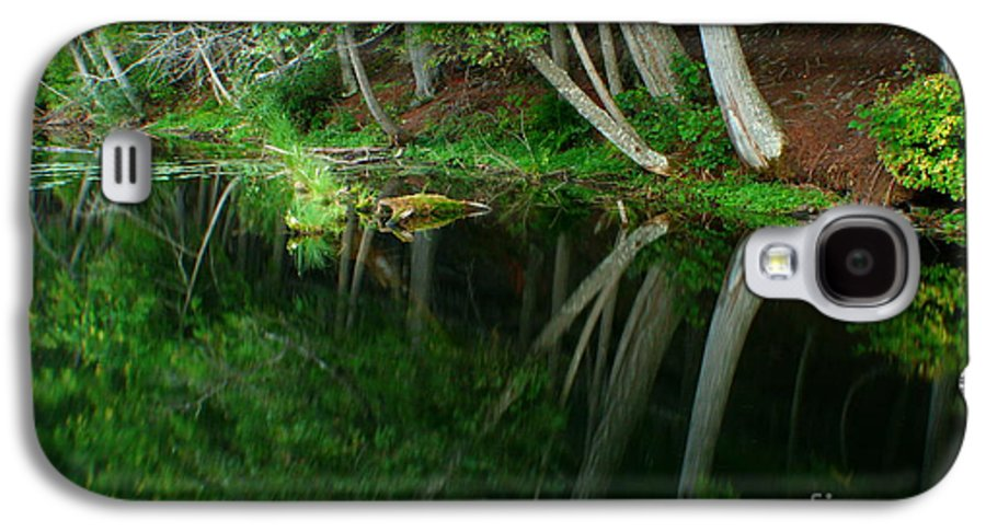 Forest Galaxy S4 Case featuring the photograph Reflections Of A Forest by Idaho Scenic Images Linda Lantzy