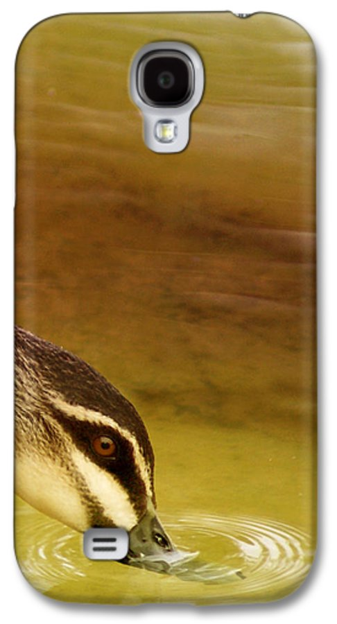 Animals Galaxy S4 Case featuring the photograph Ripples by Holly Kempe