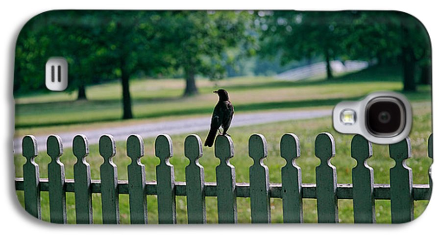 Bird Galaxy S4 Case featuring the photograph Robin On A Fence by Lone Dakota Photography