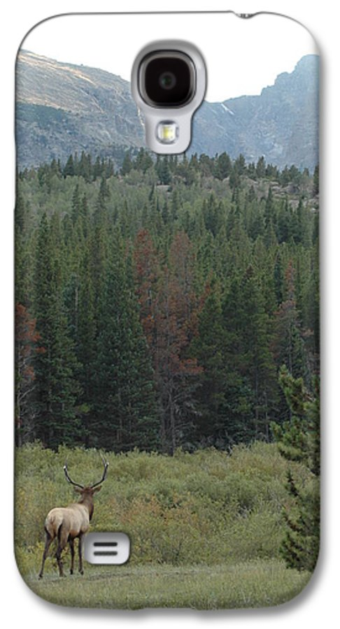 Elk Galaxy S4 Case featuring the photograph Rocky Mountain Elk by Kathy Schumann