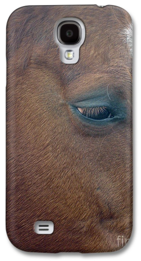 Horse Galaxy S4 Case featuring the photograph Sad Eyed by Shelley Jones