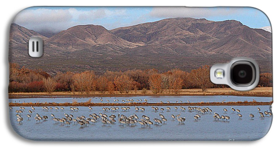 Sandhill Crane Galaxy S4 Case featuring the photograph Sandhill Cranes Beneath The Mountains Of New Mexico by Max Allen