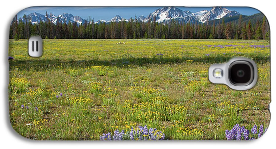Wildflowers Galaxy S4 Case featuring the photograph Sawtooths And Wildflowers by Idaho Scenic Images Linda Lantzy