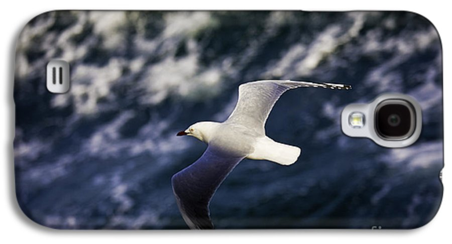 Seagull Galaxy S4 Case featuring the photograph Seagull In Wake by Avalon Fine Art Photography